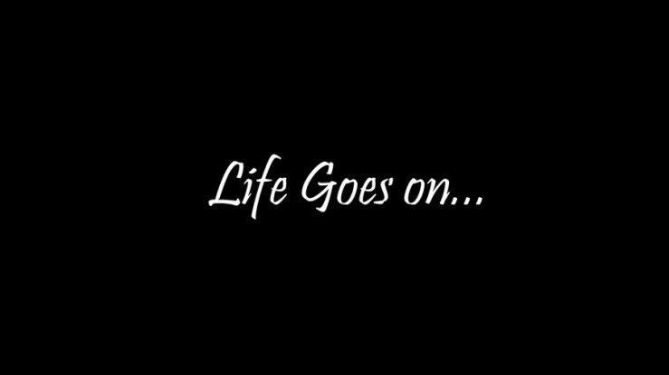 life_goes_on_by_avinashgamebroy-d3dc3ib